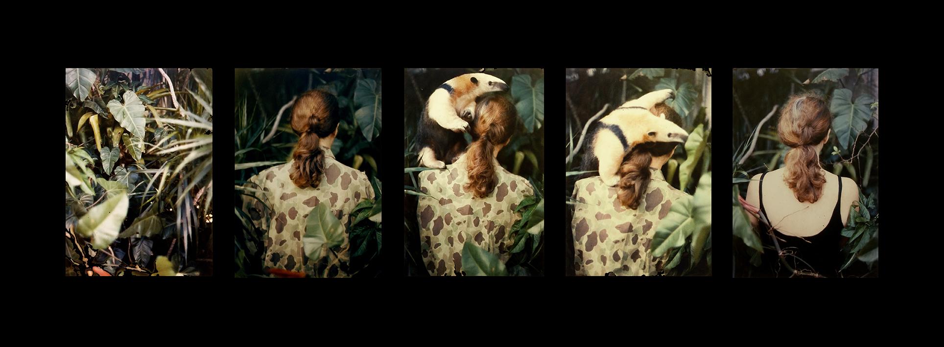 ABG_Camouflage, 1980