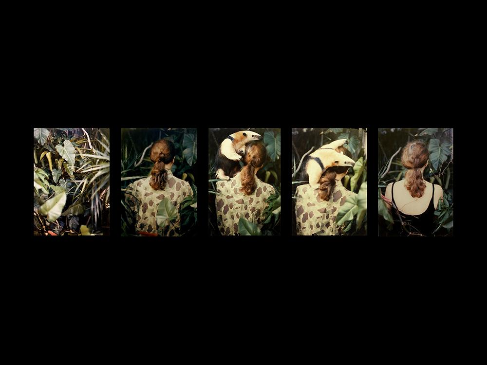 Anna Bella Geiger, Camouflage, camuflaje, serigrafia, srtista brasileña, arte,