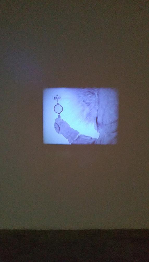 Exposición-EOLIONIMIA.-Video1930