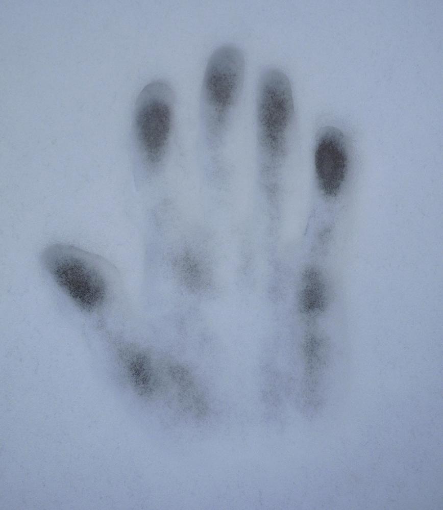 """Fernando Sinaga """"Huella en la nieve"""" 2007"""