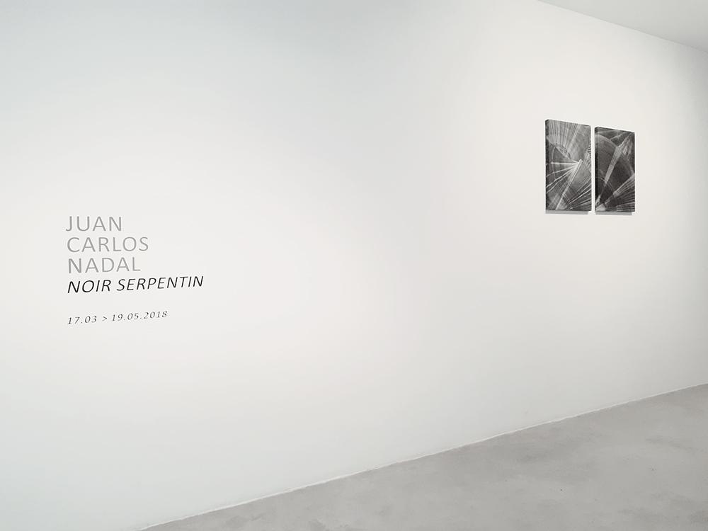 JCNadal_Noir Serpentine_Vista Exposición