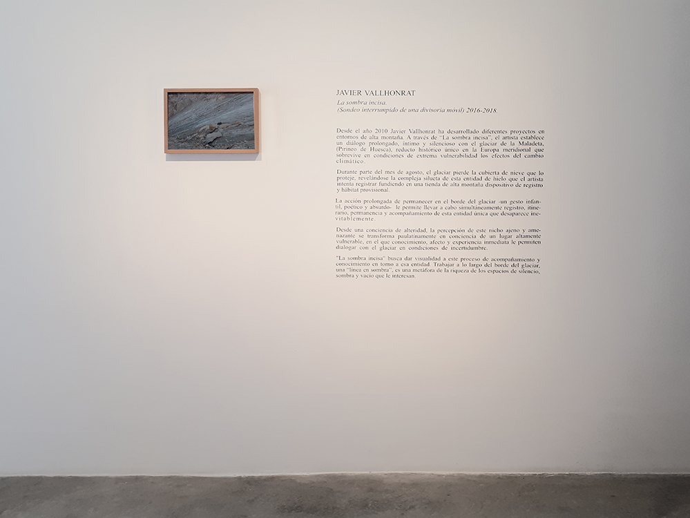 Javier Vallhonrat_Exposición_La sombra incisa_Alicante_1