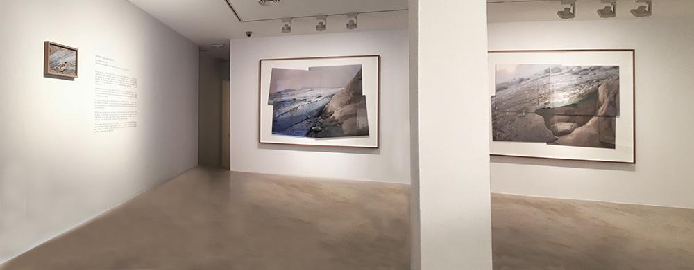 Javier Vallhonrat_Exposición_La sombra incisa_Alicante_2