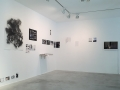 Judith Egger_Lost in shrubland_View of the exhibition